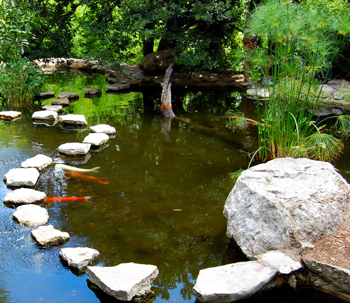 Creation bassin koi creation bassin de jardin le jardin for Bassin koi japonais